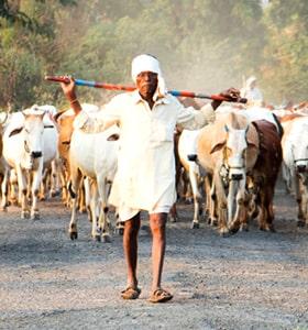 Muthoot Blue Grameen Jyoti Gold Loans